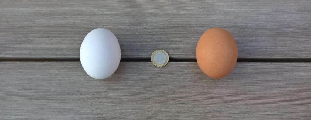 Frühstückseier und 'n Euro