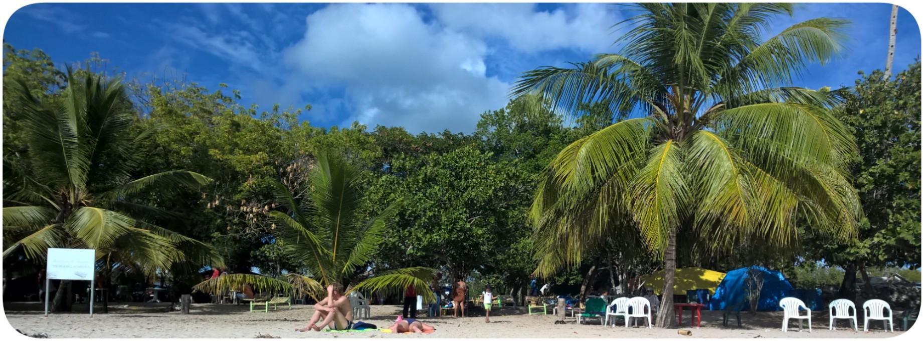 Folge335_ Dominikanische Republik